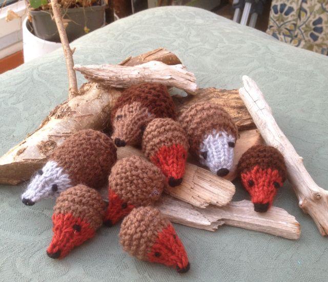 Fiona's hedgehogs ws